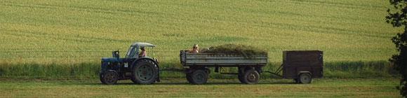 Bauer mit Traktor der auf einem Feldwerg fährt