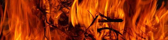 Hand im Feuer Spruch