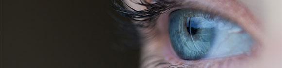 Augen Prinz Pi Zitate