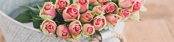 Rosaroter Rosenstrauß, passend zum Zitat von Oscar Wilde