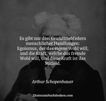 Spruch egoisten Wunderbar's Sammelsurium