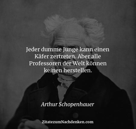 Jeder dumme Junge kann einen Käfer zertreten. Aber alle Professoren der Welt können keinen herstellen. - Arthur Schopenhauer