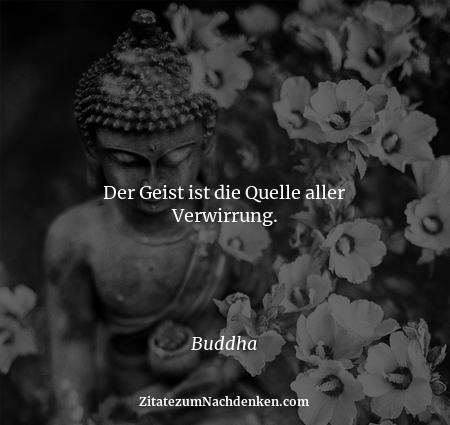 Der Geist ist die Quelle aller Verwirrung. - Buddha