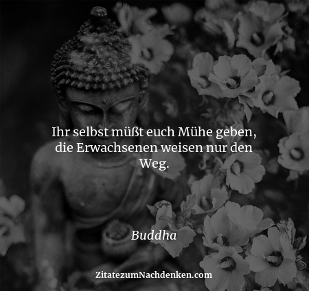 Ihr selbst müßt euch Mühe geben, die Erwachsenen weisen nur den Weg. - Buddha