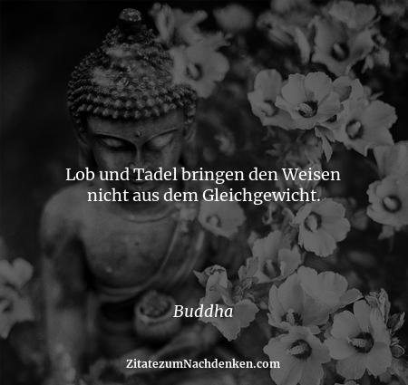 Lob und Tadel bringen den Weisen nicht aus dem Gleichgewicht. - Buddha