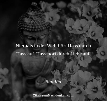 Niemals in der Welt hört Hass durch Hass auf. Hass hört durch Liebe auf.  - Buddha