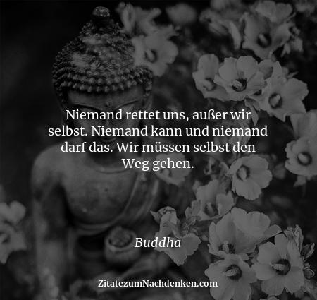 Niemand rettet uns, außer wir selbst. Niemand kann und niemand darf das. Wir müssen selbst den Weg gehen. - Buddha