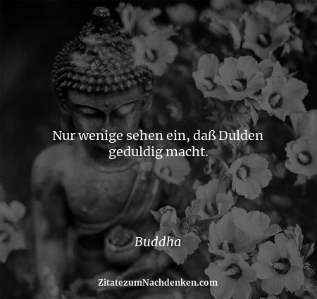 Nur wenige sehen ein, daß Dulden geduldig macht. - Buddha