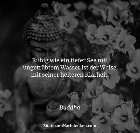Ruhig wie ein tiefer See mit ungetrübtem Wasser ist der Weise mit seiner heiteren Klarheit. - Buddha