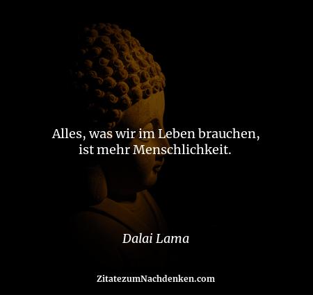 Alles, was wir im Leben brauchen, ist mehr Menschlichkeit.  - Dalai Lama