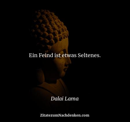 Ein Feind ist etwas Seltenes. - Dalai Lama