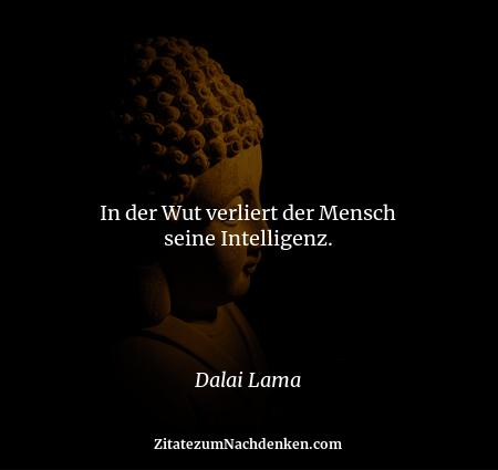In der Wut verliert der Mensch seine Intelligenz. - Dalai Lama