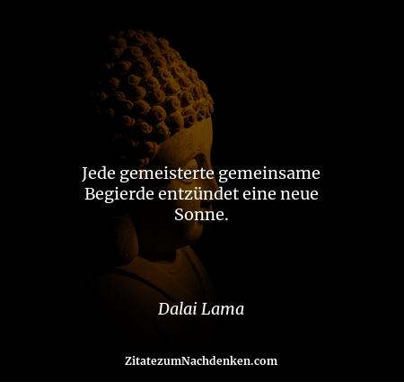 Jede gemeisterte gemeinsame Begierde entzündet eine neue Sonne. - Dalai Lama