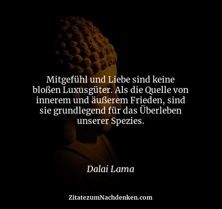 Mitgefühl und Liebe sind keine bloßen Luxusgüter. Als die Quelle von innerem und äußerem Frieden, sind sie grundlegend für...