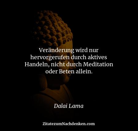Veränderung wird nur hervorgerufen durch aktives Handeln, nicht durch Meditation oder Beten allein. - Dalai Lama