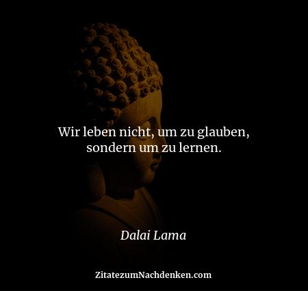 Wir leben nicht, um zu glauben, sondern um zu lernen. - Dalai Lama