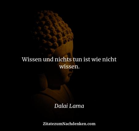 Wissen und nichts tun ist wie nicht wissen. - Dalai Lama