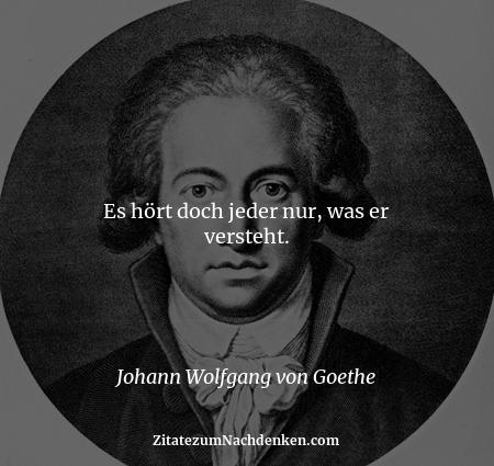 Es hört doch jeder nur, was er versteht. - Johann Wolfgang von Goethe
