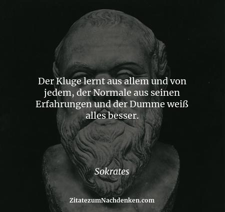Der Kluge lernt aus allem und von jedem, der Normale aus seinen Erfahrungen und der Dumme weiß alles besser. - Sokrates